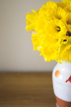 MTP_daffodils_1
