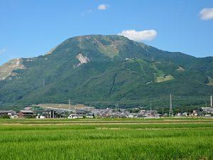 夏の伊吹山
