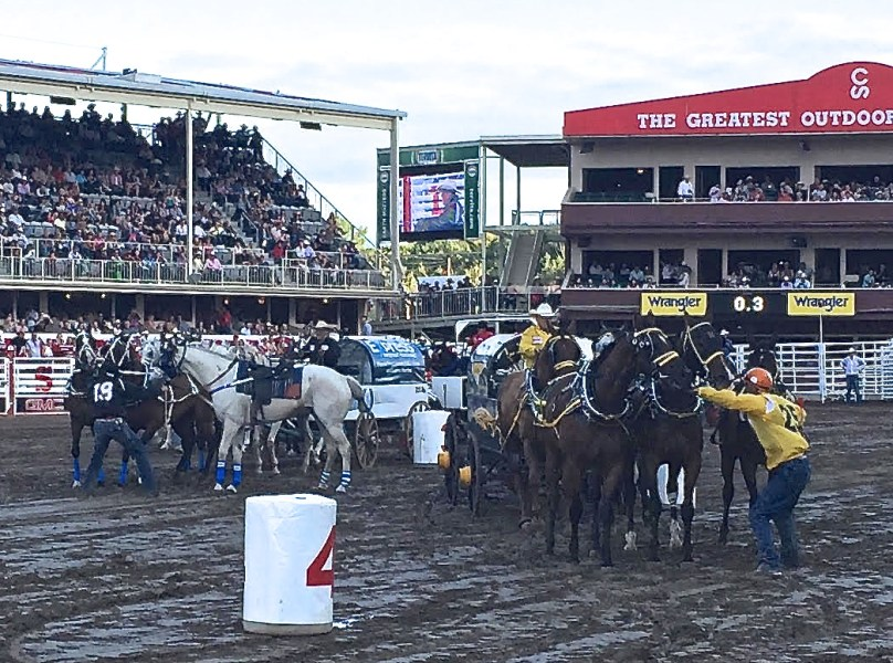 Outriders at Calgary Stampede 2015
