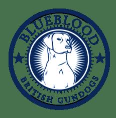 Blueblood Health Guarantee