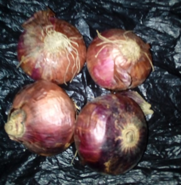 Onion Producers and Marketers Association Of Nigeria To Seize Supply Of Onion To The South-East.