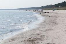 Strand beim Jugenddorf Wittow
