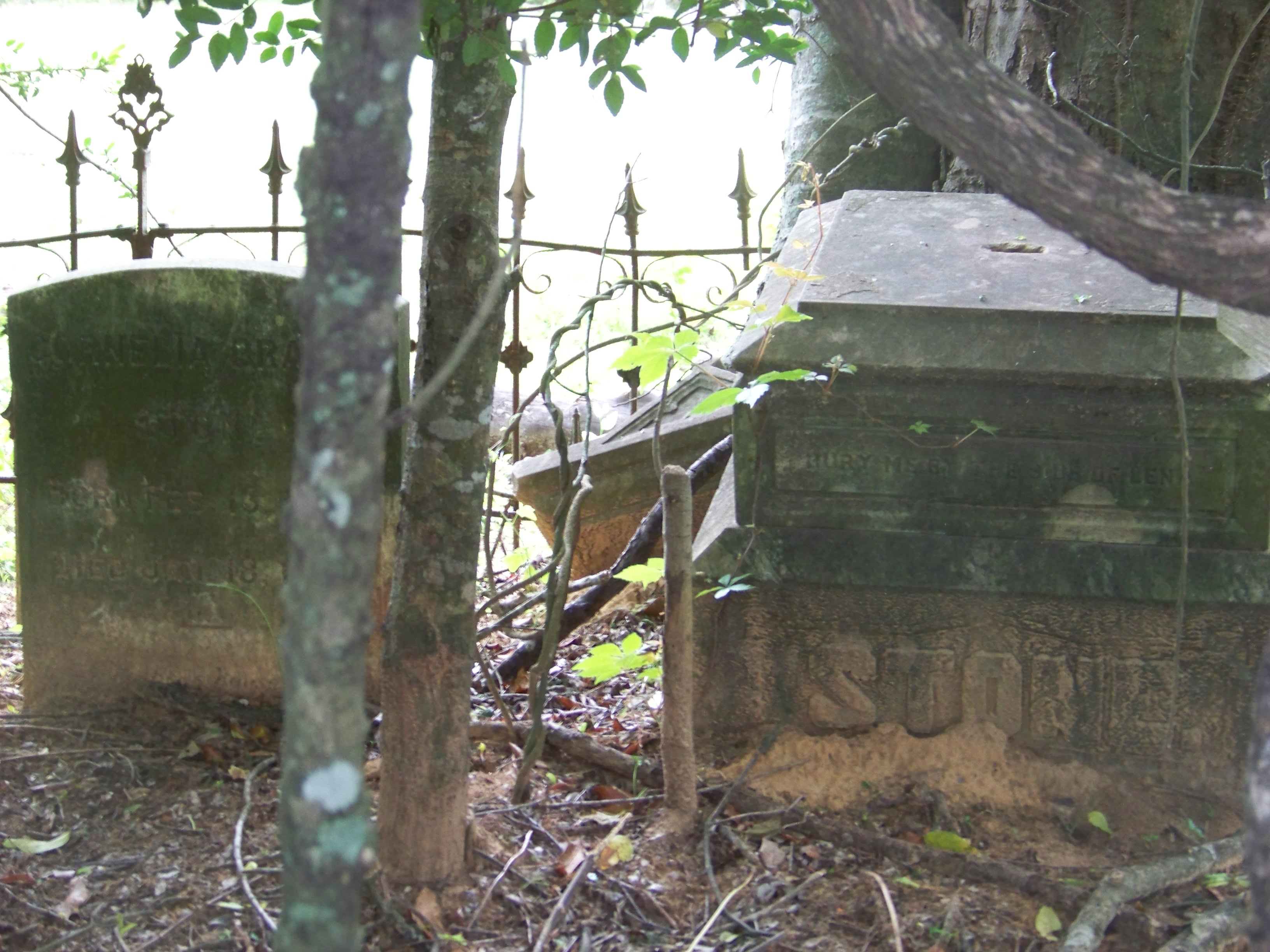 Legal Battle Looming Over Access To Historic Liberty Cemetery