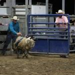 2019dayton FFA rodeo 35