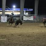 2019dayton FFA rodeo 51