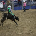 2019dayton FFA rodeo 57