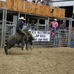 2019dayton FFA rodeo 76