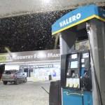2419mayfly swarm 6