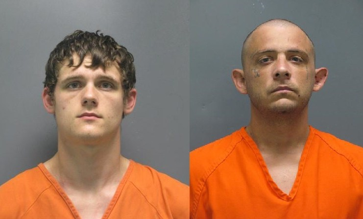 Daily Arrest Report | Bluebonnet News