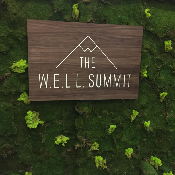 The W.E.L.L. Summit
