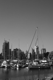 Boats and Skyline