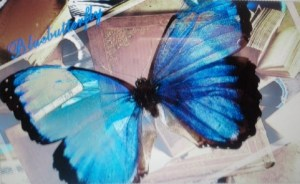 blauer Schmetterling auf Buchuntergrund