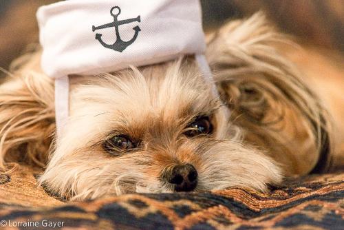 juliet-the-sailor-girl
