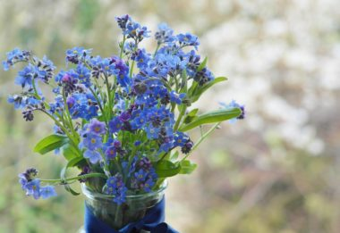 A Crystal Forget-Me-Not Flower in a Vase