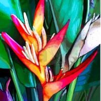 Heliconia Flower (Balisier) Exotic Digital Painting © BluedarkArt