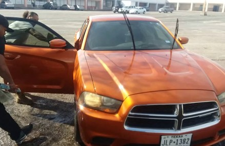 Orange Charger on 24s For 95518 Arcata CA