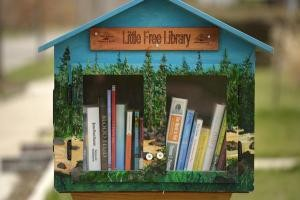 TINY LIBRARIES POPPING UP AROUND METRO NEIGHBORHOODS OF DENVER, CO