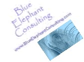 Blue Elephant Consulting