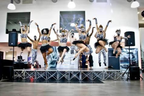 Zebra themed dancers performing a Tribal flash mob
