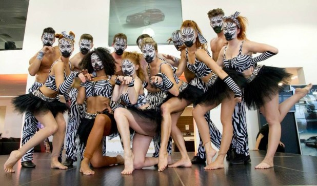 Group of dancers performing a Zebra themed flash mob for business launch