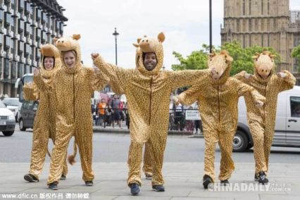 Dancers as giraffes for flashmob