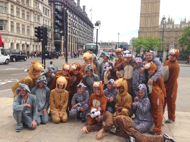 Animal Flashmob outside Big Ben in London