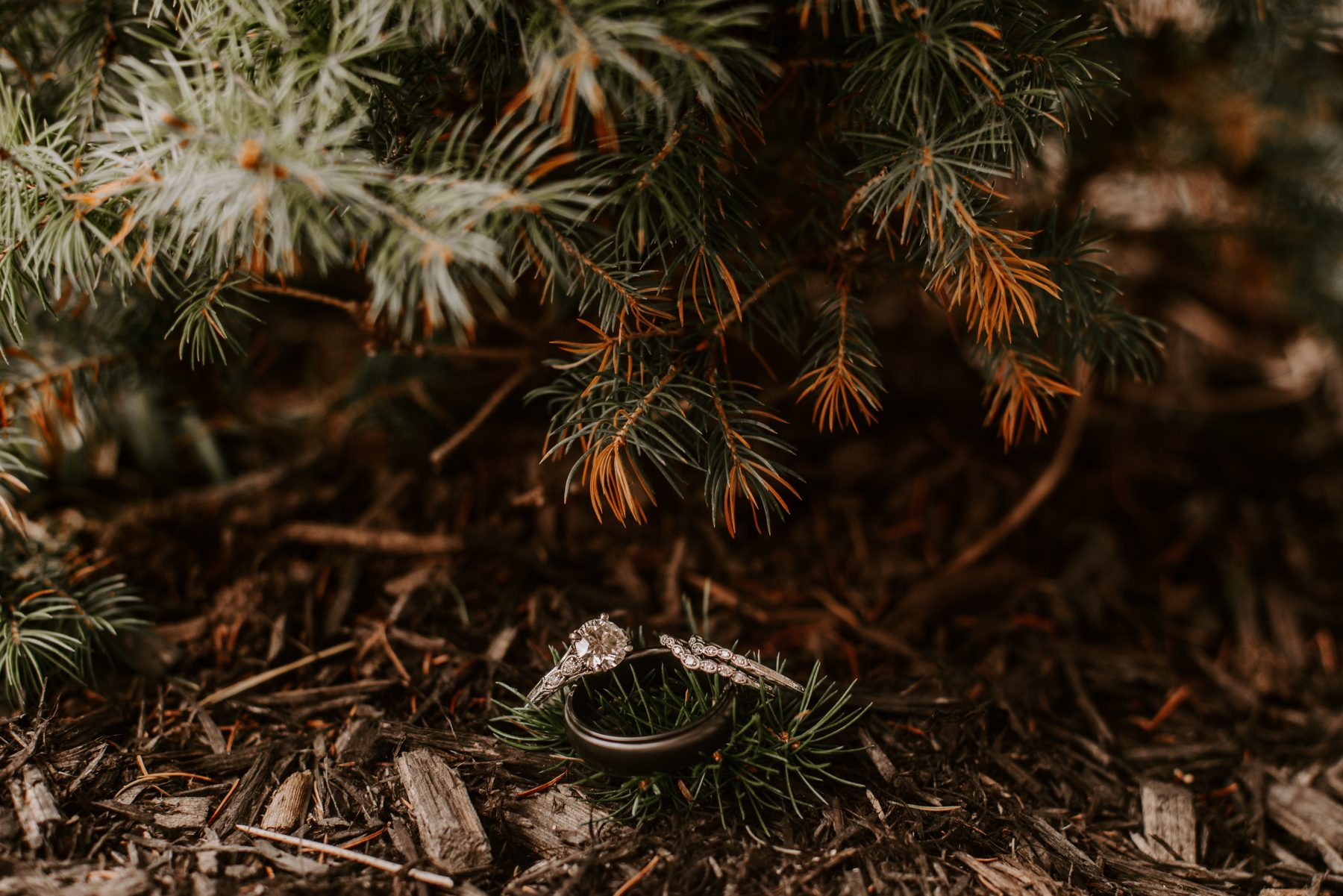 Castle Hill Newport Elopement Lorrie and Ed Blueflash Photography 1