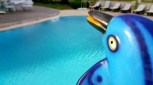 antalya yüzme havuzu konyaaltı sahilde oteller blue garden hotel (17)