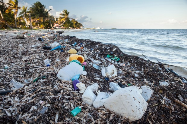 Plastic Waste Photo: National Geographic