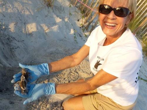 Debbie Rescues Hatchlings 2013