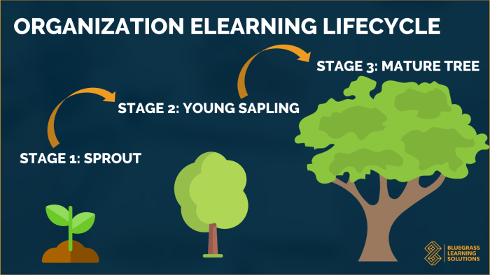 Bluegrass Learning Solutions Organization eLearning Lifecycle