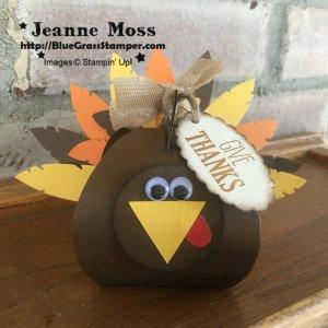 janet's turkey
