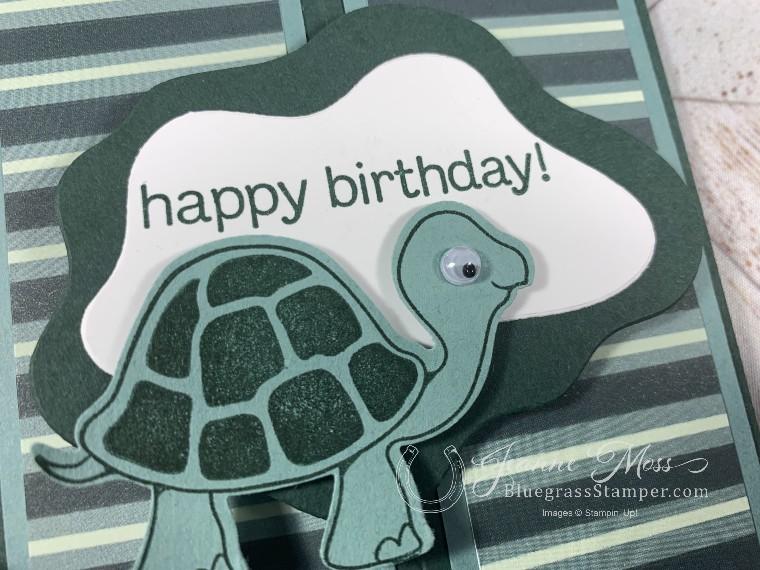Turtle Friends Card Detail
