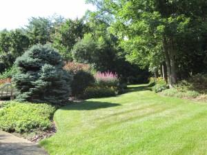 Garden border photo