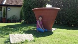 Giant pot