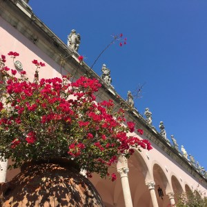 Photo of Ringling Museum