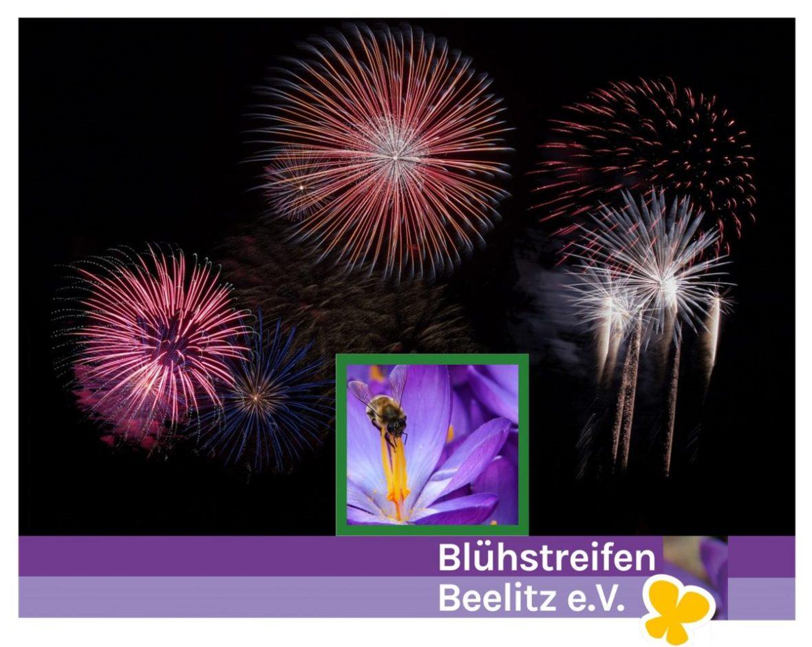 Jahresrückblick Blühstreifen Beelitz e.V.