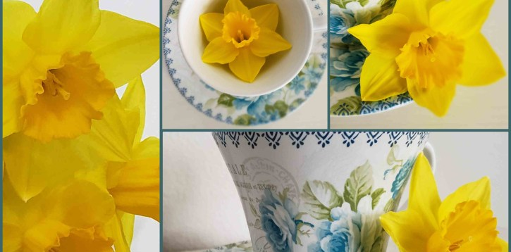 Daffodils and Teacups