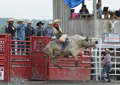 Shooting a Rodeo – July 4th 2015