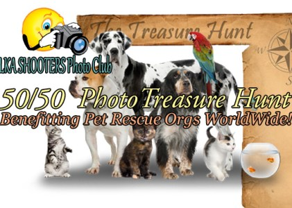 EVENT: Photo TREASURE Hunt! 50/50 goes to Pet Rescue Organizations