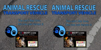 0LR-Rescue Car Magnet - Blue