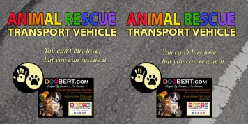 0LR-Rescue Car Magnet - Rainbow