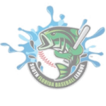 South Florida Baseball League SFBL