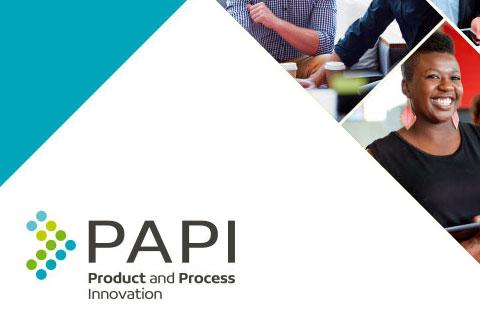 PAPI project