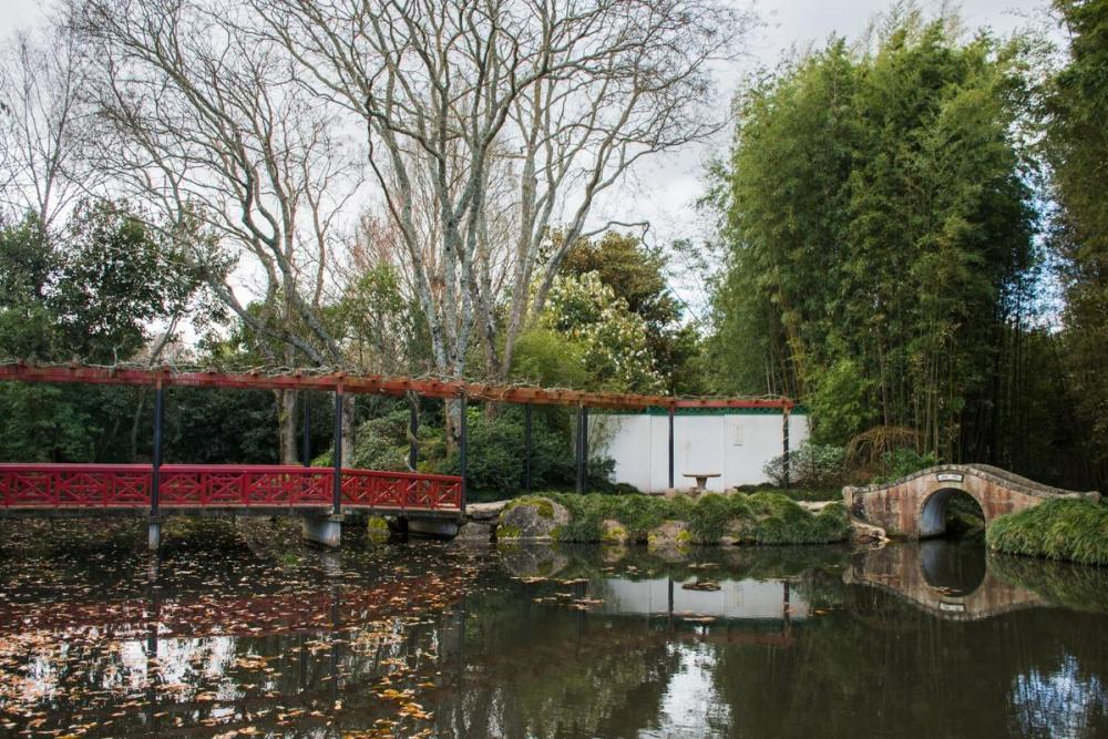 Chinese garden in Hamilton gardens - lake, red pier, stone bridge (a must stop at New Zealand North Island Road Trip)