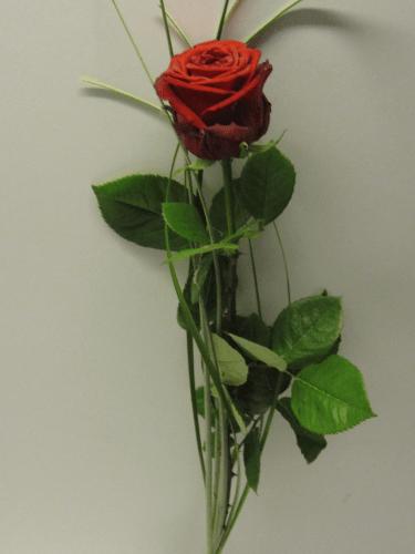 Blumenstrauss LiebeLiebeLiebe  BlumenPflanzenFloristik