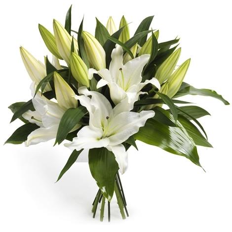 Blumenstrauss TrauerStrauss Lilienweiss  Versand fr