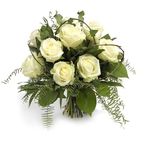 Blumen  Pflanzen fr Bro und BusinessBlumenPflanzen