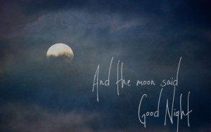 moon12423