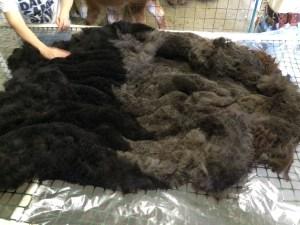 patchouli.fleece